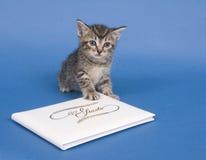Gatito con el libro de huésped foto de archivo
