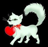 Gatito con un corazón y un arqueamiento Fotografía de archivo