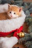 Gatito del jengibre en el sombrero de santa contra la perspectiva de una Navidad Imagen de archivo