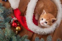 Gatito del jengibre en el sombrero de santa contra la perspectiva de una Navidad Fotografía de archivo libre de regalías