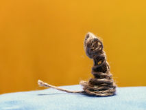 Gatito del juguete Imagen de archivo libre de regalías