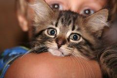 Gatito del niño Foto de archivo libre de regalías