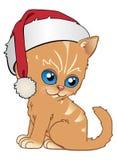 Gatito en la Navidad Fotos de archivo