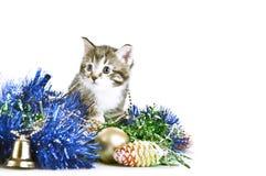 Gatito entre la decoración del árbol de navidad Fotos de archivo
