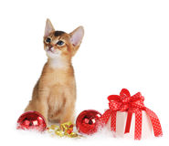 Gatito lindo con las bolas de la Navidad y la caja de regalo Fotos de archivo