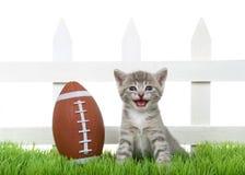 Gatito minúsculo Meowing del gato atigrado en la hierba con fútbol aislada fotografía de archivo