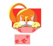 Gatito mullido en una caja Sorpresa el día de fiesta stock de ilustración
