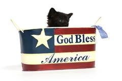 Gatito negro en el 4to del envase de julio Imagen de archivo libre de regalías