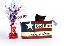 Gatito negro en el 4to del envase de julio fotografía de archivo