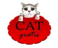 Gatito que cuelga en una bandera roja con el gato del lema gratis stock de ilustración