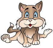 Gatito que se sienta de Brown Imágenes de archivo libres de regalías