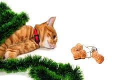 Gatito rojo-dirigido cansado mintiendo en su lado en la malla de la Navidad Foto de archivo libre de regalías