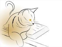 Gatito y el libro Imágenes de archivo libres de regalías
