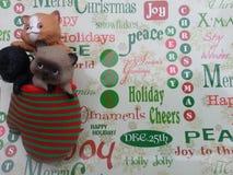 Gatitos de la Navidad en el papel de embalaje Imagen de archivo