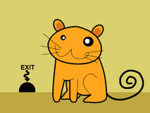 Gato Imagem de Stock