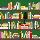 Gato abstracto con los libros coloridos en el estante Fotos de archivo libres de regalías