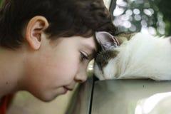 Gato adolescente del beso del muchacho que duerme en el coche Imagen de archivo libre de regalías