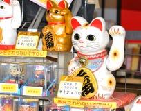 Gato afortunado Fotos de archivo libres de regalías