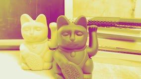 Gato afortunado japonés en blanco almacen de metraje de vídeo