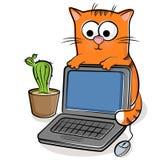 Gato agradable con la computadora portátil Foto de archivo libre de regalías