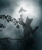 Gato ambushing el pájaro cantante Imagenes de archivo