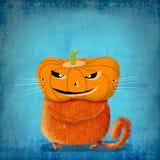Gato anaranjado con la cabeza de la calabaza Imagen de archivo
