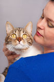 Gato atigrado adulto Foto de archivo libre de regalías