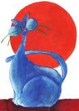 Gato azul com o vermelho do sol Foto de Stock Royalty Free
