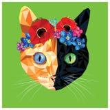 Gato bajo polivinílico Fotos de archivo