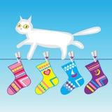 Gato blanco en una línea de ropa Foto de archivo