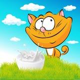Gato bonito do gengibre que senta-se na grama verde com leite Imagens de Stock Royalty Free
