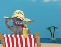 Gato bonito que relaxa com suco na praia Fotografia de Stock