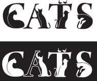 Gato-cartas Imagen de archivo libre de regalías