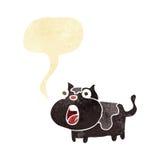 gato chocado historieta con la burbuja del discurso Imagen de archivo