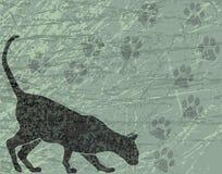Gato cinzento ilustração royalty free
