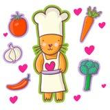 Gato - cocinero Imágenes de archivo libres de regalías