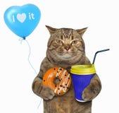 Gato com filhós e cappuccino alaranjados fotografia de stock royalty free