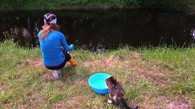 Gato com os peixes da captura da garra da bacia, pesca da mulher na lagoa video estoque