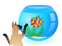 Gato com os peixes pequenos no aquário Fotos de Stock Royalty Free