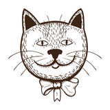 Gato con el arqueamiento Fotografía de archivo