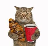 Gato con el bollo y el café del chocolate fotografía de archivo