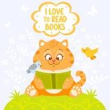 Gato con el libro Fotos de archivo libres de regalías