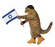 Gato con la bandera israelí foto de archivo libre de regalías