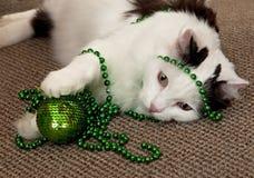 Gato con las decoraciones de un Año Nuevo. Foto de archivo libre de regalías