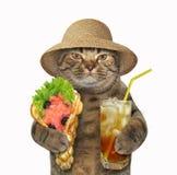 Gato con las galletas y el té de la suavidad imagenes de archivo