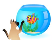 Gato con los pequeños pescados en acuario Fotos de archivo libres de regalías