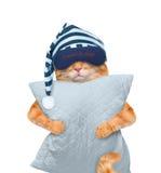 Gato con una máscara para dormir con una almohada Fotografía de archivo