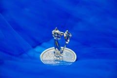 Gato cristalino de las estatuillas con los anillos en una placa encendido Imagenes de archivo