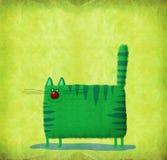 Gato cuadrado verde en fondo de la cal Imágenes de archivo libres de regalías