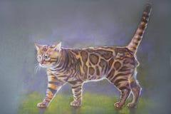 Gato de bengal da pintura fotografia de stock
